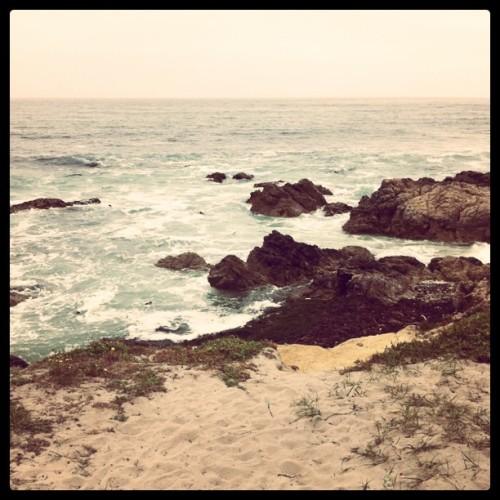 Monterey: July 2011