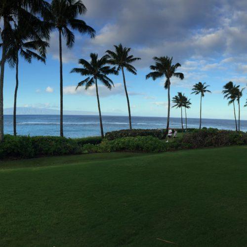 Hawaii: January 2018